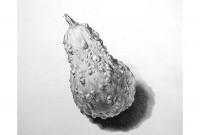 http://abbeyryan.com/files/gimgs/th-43_43_gourd500.jpg
