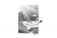 http://abbeyryan.com/files/gimgs/th-43_43_underwater500.jpg