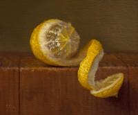 http://abbeyryan.com/files/gimgs/th-47_abbey-ryan-partially-peeled-lemon_v2.jpg