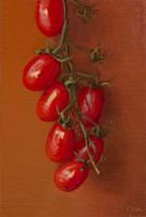 http://abbeyryan.com/files/gimgs/th-47_abbeyryan-assisi2015-tomatoes-sm_v2.jpg