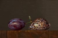 http://abbeyryan.com/files/gimgs/th-47_abbeyryan-pohnpeian-cowry-italian-plum-2.jpg