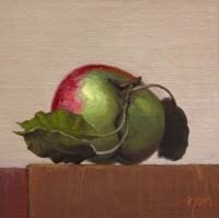 http://abbeyryan.com/files/gimgs/th-56_abbeyryan-2016-apple-leaves-light-background5x5_v2.jpg