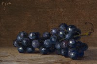 http://abbeyryan.com/files/gimgs/th-56_abbeyryan-2016-concord-grapes-on-marble4x6.jpg