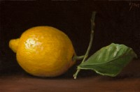 http://abbeyryan.com/files/gimgs/th-56_abbeyryan-2016-lemon-with-leaf4x6.jpg