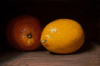 http://abbeyryan.com/files/gimgs/th-56_abbeyryan-2016-meyer-lemons4x6.jpg