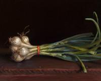 http://abbeyryan.com/files/gimgs/th-56_abbeyryan-2016-spring-onions-8x10sm.jpg