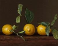 http://abbeyryan.com/files/gimgs/th-56_abbeyryan-2016-three-lemons-with-leavesSM.jpg
