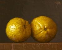 http://abbeyryan.com/files/gimgs/th-56_abbeyryan-2016-two-lemons4x5.jpg