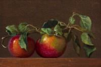 http://abbeyryan.com/files/gimgs/th-56_abbeyryan-2017-hand-picked-apples-same-branch-4x6.jpg