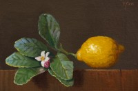 http://abbeyryan.com/files/gimgs/th-56_abbeyryan-2017-lemon-with-leaves-flower-bud4x6.jpg