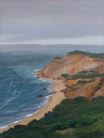 http://abbeyryan.com/files/gimgs/th-56_abbeyryan-2017-marthas-vineyard-aquinnah-cliffs-9x12sm.jpg