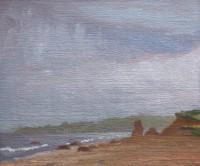 http://abbeyryan.com/files/gimgs/th-56_abbeyryan-2017-marthas-vineyard-lucy-vincent-beach-fog.jpg