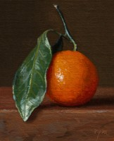 http://abbeyryan.com/files/gimgs/th-56_abbeyryan-2017-satsuma-tangerine-leaf-5x4.jpg