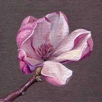 http://abbeyryan.com/files/gimgs/th-56_abbeyryan-2018-magnolia-flower-no-2-5x5.jpg