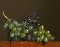http://abbeyryan.com/files/gimgs/th-56_abbeyryan-2019-green-grapes-dragonfly-4x5.jpg