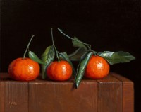 http://abbeyryan.com/files/gimgs/th-56_abbeyryan-2020-three-mandarins-leaves-8x10-small.jpg