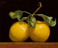 http://abbeyryan.com/files/gimgs/th-56_abbeyryan-2020-yellow-apples-together-5x6.jpg